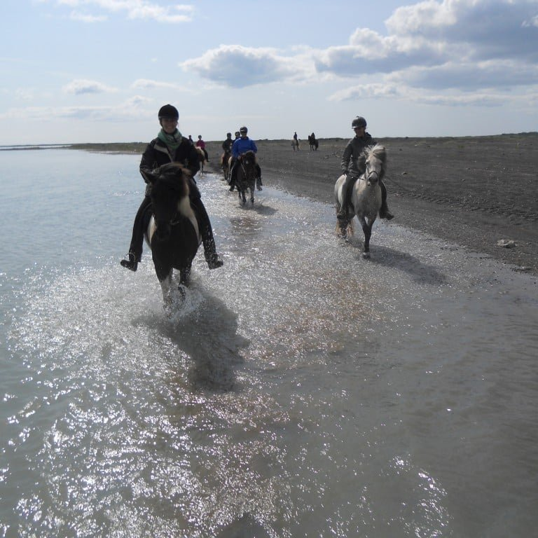 Horse riding tour on the coastline